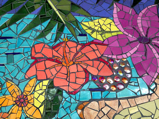 Global Mosaic Project Costa Rica