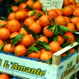 Oranges at Campo de Fiori