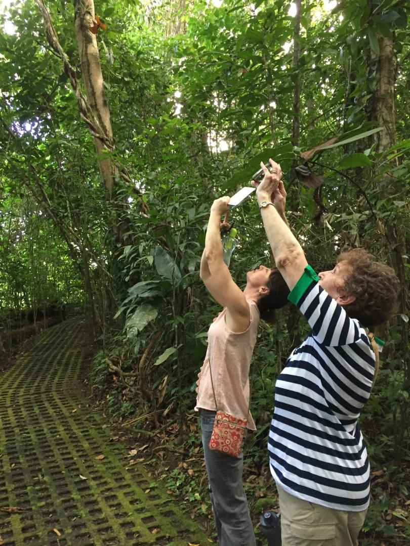Costa Rica Art Retreat