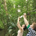 Capturing Rainforest Images